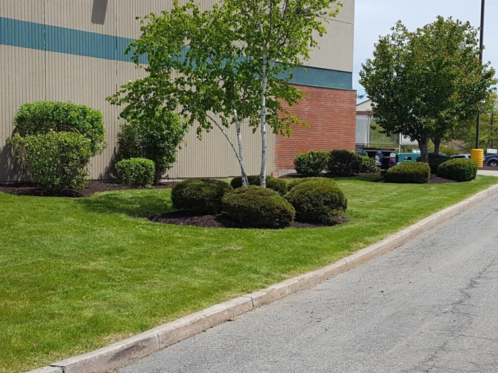 ECIS-commercial-landscaping-4x3
