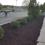 ECIS-landscaping7